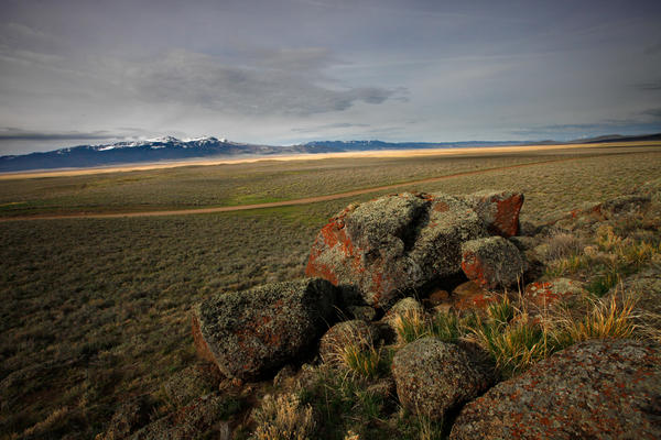 The wide-open prairie of the Centennial Valley in southwestern Montana. Sage grouse living here could be placed on the endangered species list if its numbers and prairie habitat continue to decline.