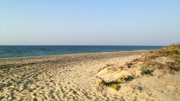 The Martha's Vineyard beach where Heidi Feldman collects saltwater to make sea salt.