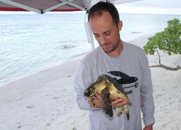 Ecologist Kyle Van Houtan in the field with a wild hawksbill sea turtle. Van Houtan began reading old Hawaiian menus in search of information about the turtles but instead saw changes in fish consumption.