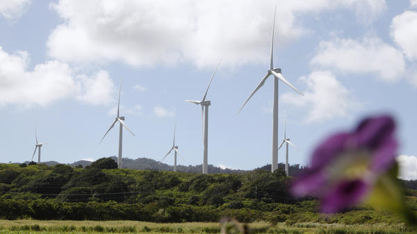 Wind turbines at the Kahuku wind farm on Oahu's North Shore in 2011. Hawaiian energy managers are hoping to build stronger connections with customers to better manage renewable sources of energy on the grid.