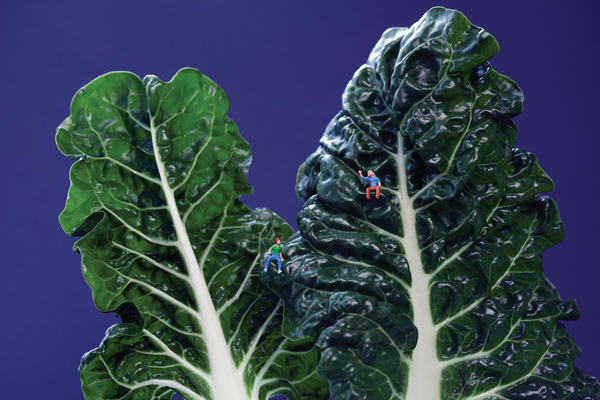 "<em>Swiss Chard Couple</em>: ""Grace and Kat bonded over their mutual love of high places."""
