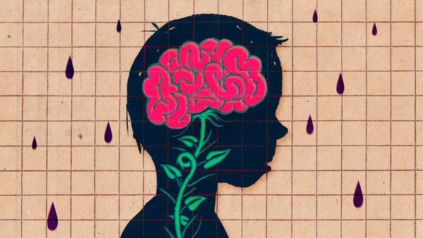 When it comes to nature versus nurture, brain scientists think both matter.