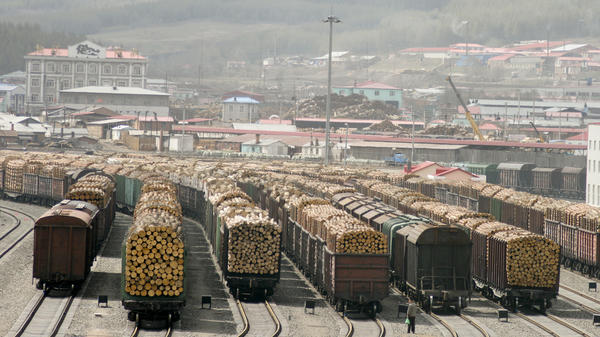 The Chinese border town of Suifenhe is a port of entry for almost all of the hardwood  coming from the Russian Far East. Russia is the world's largest exporter of timber, but illegal logging is a growing problem.
