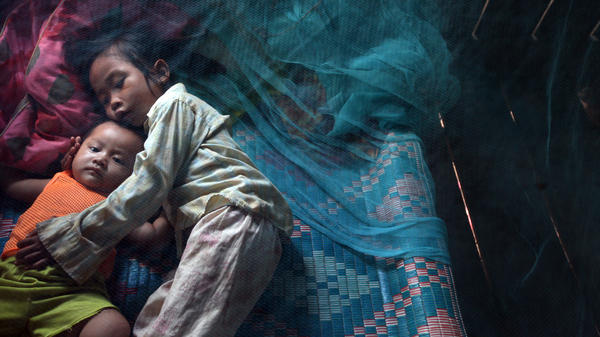 Yonta, 6, rests with her brother Leakhena, 4 months, under a mosquito bed net in the Pailin province of Cambodia, where deaths from malaria have decreased sharply in the past two decades.