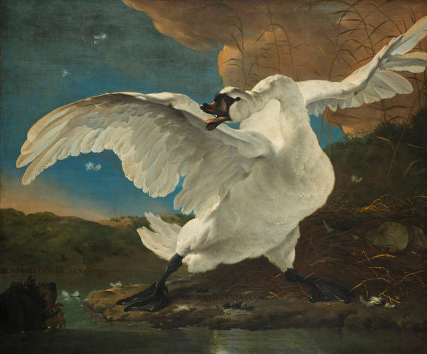 <em>The Threatened Swan</em>, from the collection of the Rijksmuseum in Amsterdam.