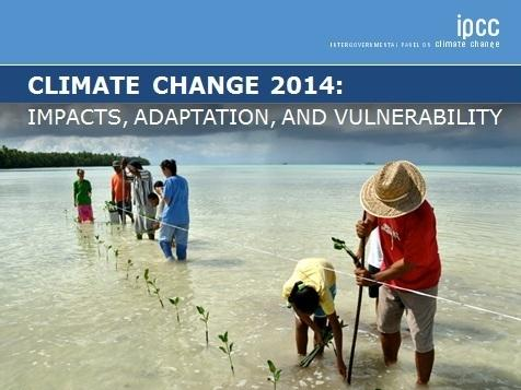 The U.N. Intergovernmental Panel on Climate Change's report.