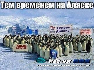 "Penguins joined the protest on a number of Russian social media websites. Their signs read: ""Crimea is ours,"" and ""Alaska is Next"" and ""Only Putin."""