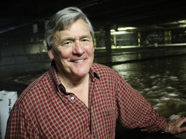 Bill Martin, president of Blue Ridge Aquaculture, in his company's tilapia-growing room.