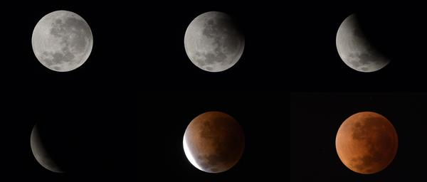 These six pictures show the phases of the moon during Tuesday's lunar eclipse. They were taken from Buenos Aires, Argentina.
