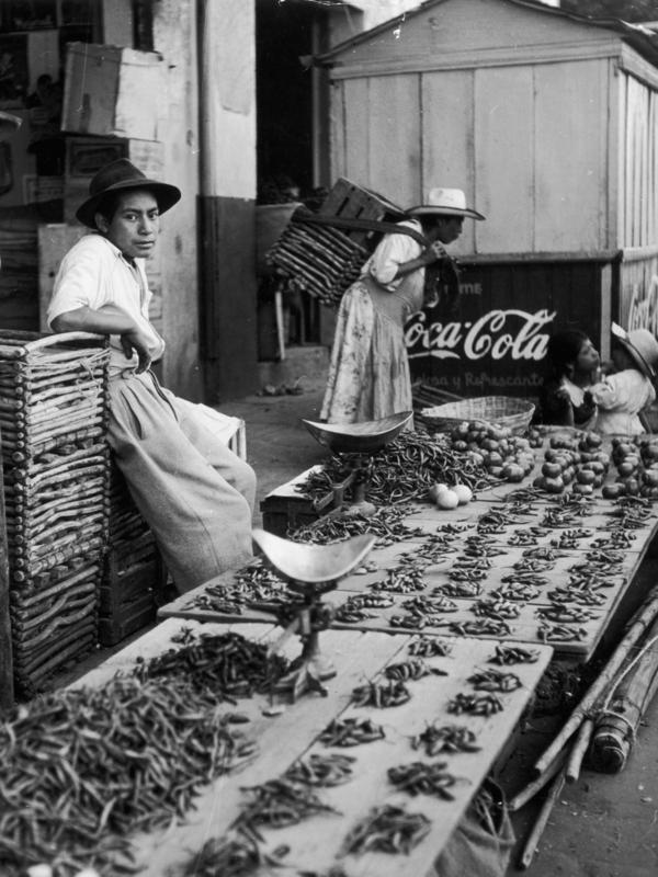 Rows of chilies for sale in the market of the Mexican town Cholula in 1955.