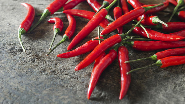 New research has traced chili peppers back to their origin in eastern Mexico.