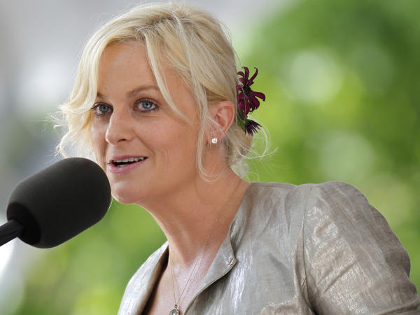 Comedian and actress Amy Poehler addresses Harvard University's graduating class of 2011 on the school's campus, in Cambridge, Mass.