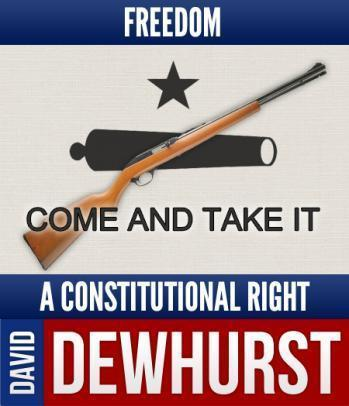 David Dewhurst, who sought another term as lieutenant governor of Texas, lost in  a runoff.