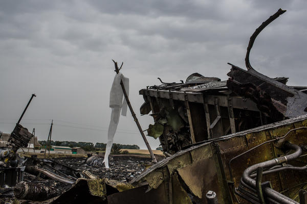 The passenger jet had nearly 300 people aboard; none survived. A white ribbon tied to a stick indicates the presence of human remains at this region of the crash site, in Grabovka, Ukraine.
