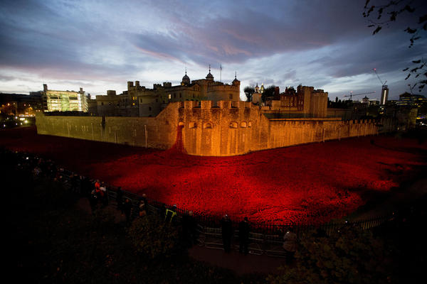 The nearly completed ceramic poppy art installation at sunrise on Tuesday.