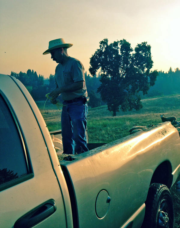 """Rancher Dan Macon says he has had little choice but to experiment and take a few chances with an """"off-farm"""" with the local University of California, Davis extension office."""