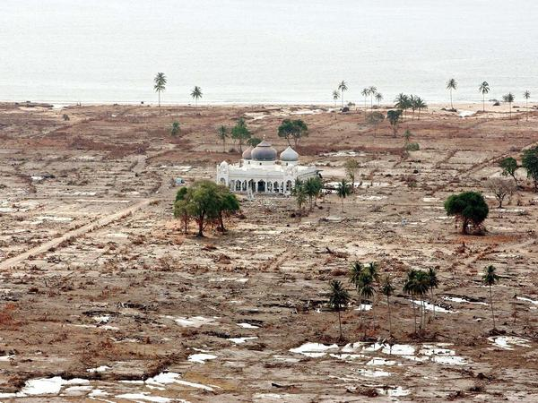 A lone mosque that survived devastating tidal waves sits amid the ruins of the village of Lhoknga, outside the provincial capital Banda Aceh, on Jan. 3, 2005. The mosque became a symbol of the tsunami's destruction.