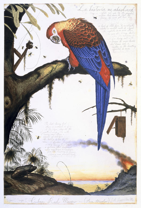 Walton Ford, <em>La Historia Me Absolvera</em>, 1999, color etching, aquatint, spit-bite and drypoint on paper