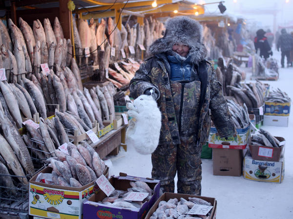 A woman sells an arctic hare along with her usual fare of frozen fish in the central market of Yakutsk.