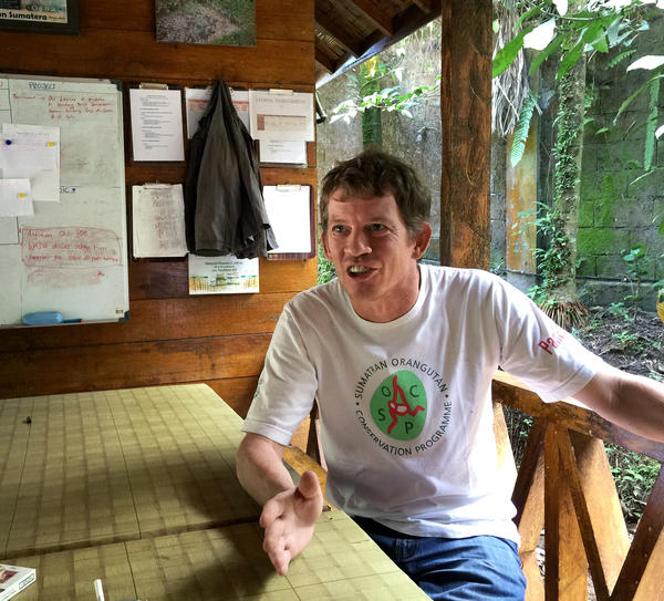 Ian Singleton, director of the Sumatran Orangutan Conservation Program, also campaigns to stop the illegal clearing of forests for palm oil, which continues despite a moratorium on destroying primary forests and peat land.