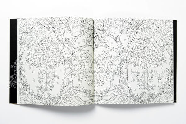 A Spread From EmEnchanted Forest An Inky Quest And Coloring Book