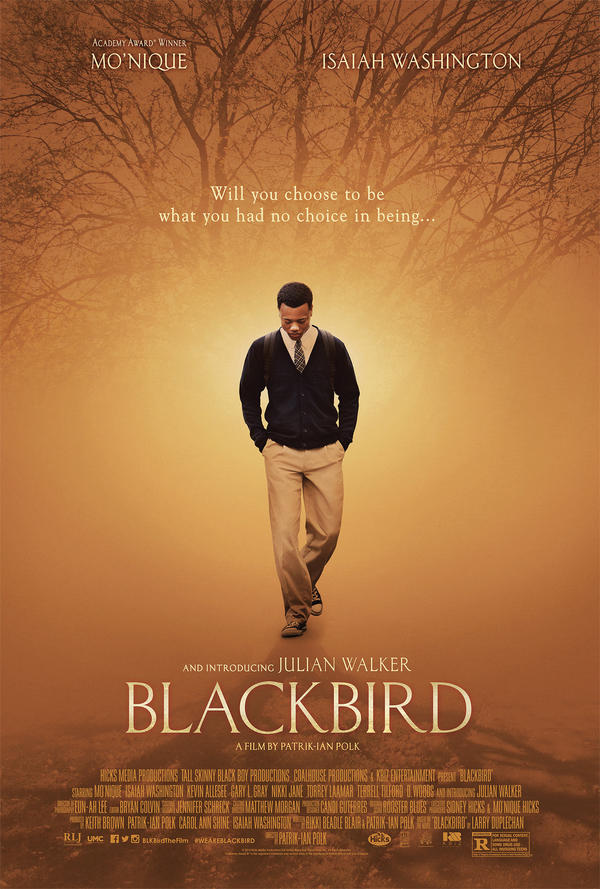 <em>Blackbird </em>is about a gay interracial romance set in the deep South.