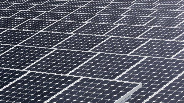 Solar panels gather sunlight in Florida.