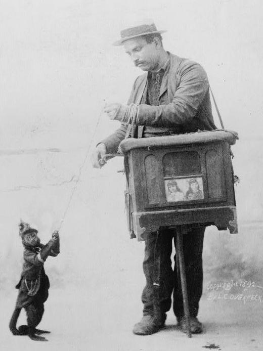 An organ grinder and his monkey, postcard dated 1892.