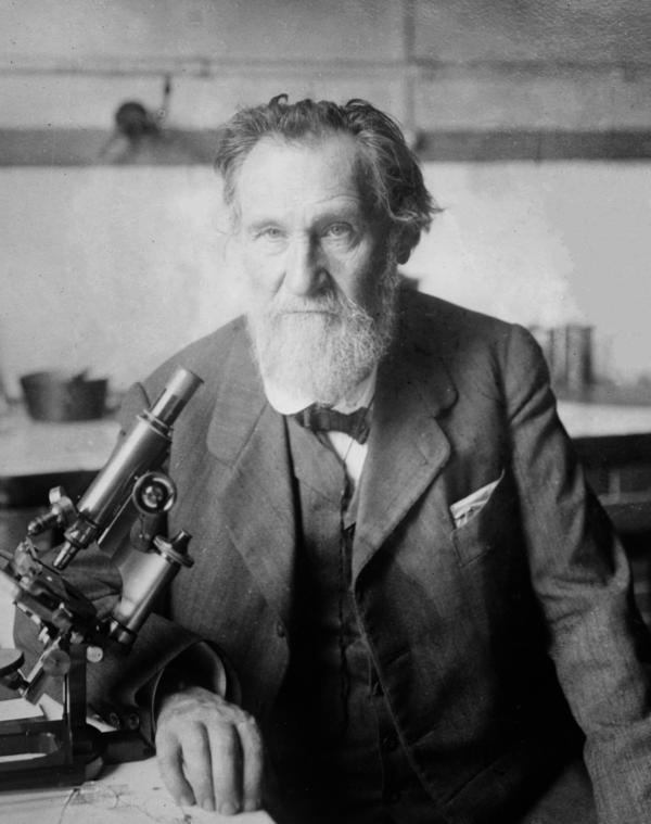 More than a century ago, Elie Metchnikoff, a Nobel Prize-winning microbiologist, hypothesized that lactic acid bacteria — like the kind found in yogurt — was important to gut health and longevity.