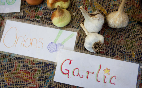 Homemade signs decorate the table at the Aya farmers market, where the kids of City Blossoms sell their produce on Saturdays.