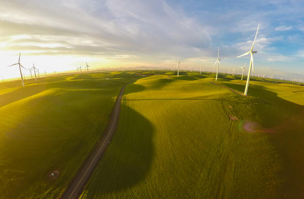 A wind farm in Montezuma Hills, about 40 miles northeast of San Francisco. California is considering proposals to, among other things, derive half the state's electricity from renewable sources.
