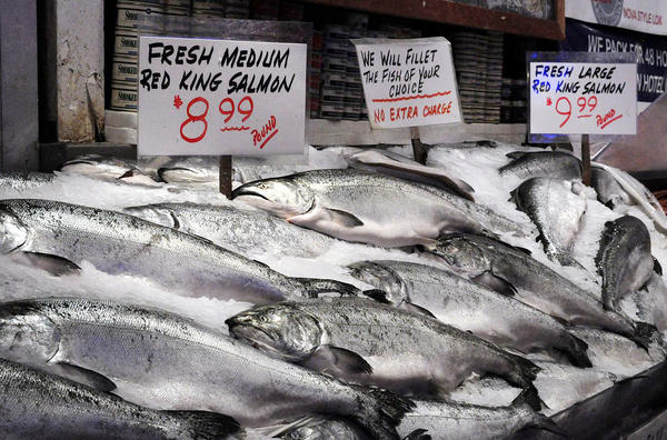 Salmon for sale at a market.