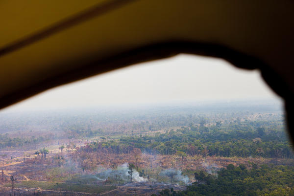 "An aerial view of Rondonia, near its capital Porto Velho during the ""burning season,"" shows how small fires run up next to the forest, where they can go out of control, burning crops and virgin forest alike."