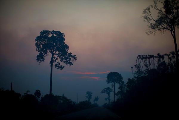 Sunset colors cut through the smoky haze in the Brazilian Amazon.