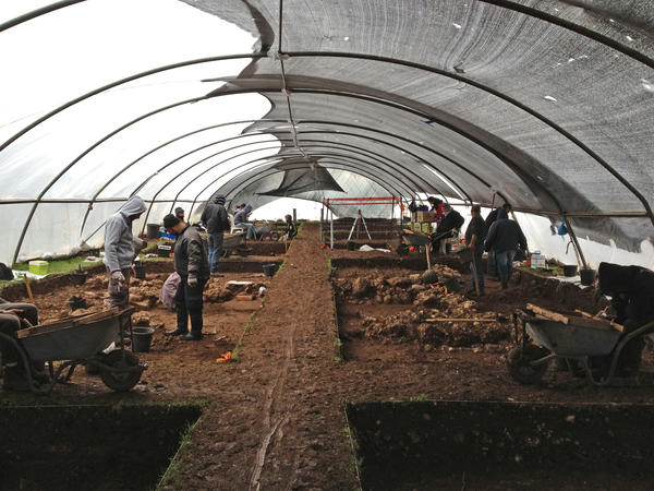 The excavation at Ahihud in the Galilee region of Israel where archaeologists found fava beans dating back 10,000 years.