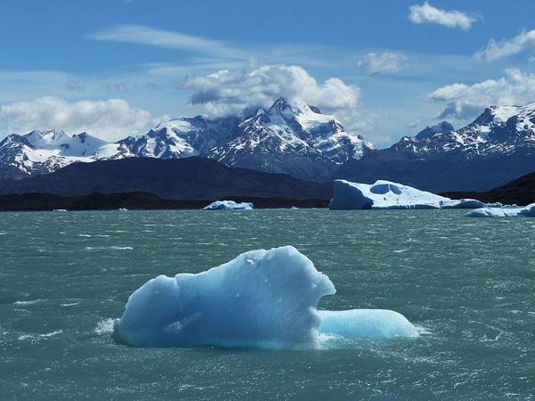A piece of ice floats in Los Glaciares National Park in Santa Cruz province, Argentina.
