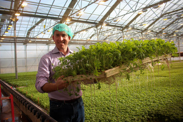 Paul Lightfoot, CEO of BrightFarms, in his company's greenhouse in Lower Makefield Township, Pa.