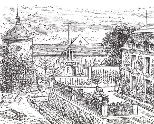 An illustration of a French property with pear and other fruit trees trained against the walls.