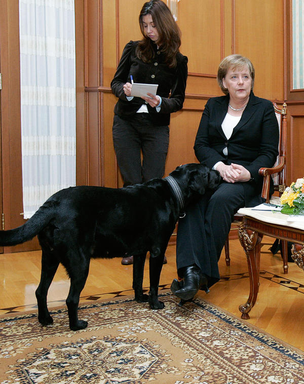 """Putin's Labrador appeared during a meeting in Sochi between Merkel and Putin in January 2007. """"I wanted to make her happy,"""" Putin told <em>Bild</em>. """"When I learned that she does not like dogs, I apologized, of course."""""""