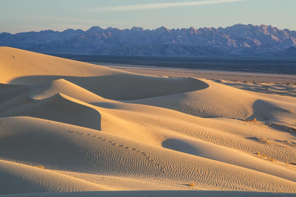 The Mojave Trails National Monument is the largest new monument, at 1.6 million acres.