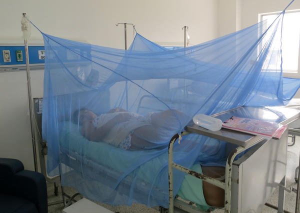 Protected from bites by a mosquito net, this pregnant woman, in her second trimester, came into the hospital in Cucuta, Colombia, with symptoms of Zika. A blood test is being run to find out if she has the virus.