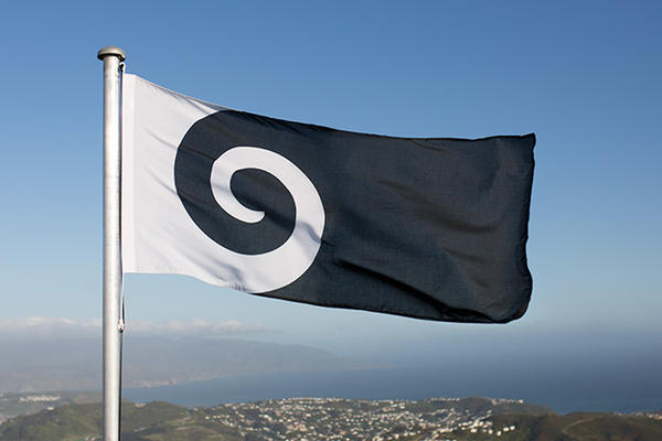 "The ""<a href=""https://www.govt.nz/browse/engaging-with-government/the-nz-flag-your-chance-to-decide/the-five-alternatives/koru/"">Koru"" design</a>, by Andrew Fyfe, represents an unfurled silver fern frond ""but is also reminiscent of a wave, a cloud, and a ram's horn,"" the designer writes."