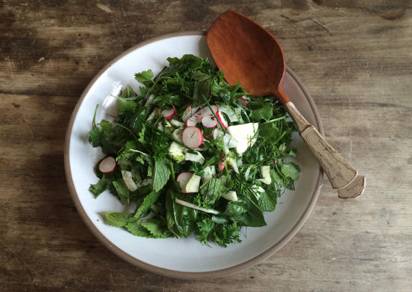 A refreshing salad of herbs, radishes and fennel. (Kathy Gunst)