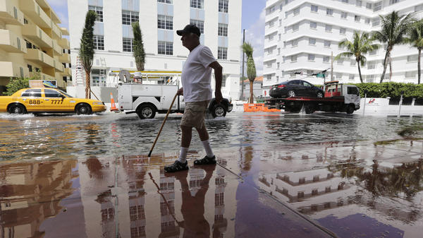 Louis Fernandez walks along a flooded Collins Avenue in Miami Beach in September 2015. The city is tackling sea-level rise by rebuilding roads and installing new storm sewers and pumps.