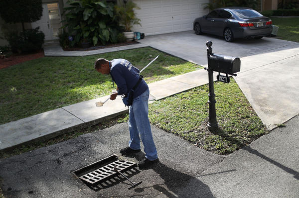 A mosquito control inspector in Miami-Dade County, Fla., looks for mosquito larvae in water from a storm drain.
