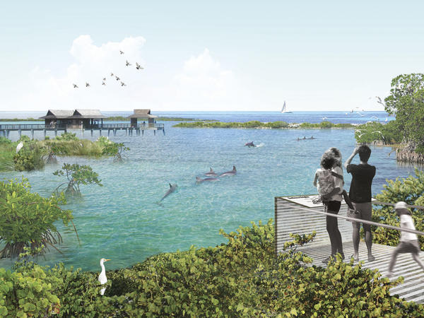An artistic rendering of the seaside dolphin sanctuary proposed by the National Aquarium in Baltimore. The aquarium is scouting locations in Florida and the Caribbean.