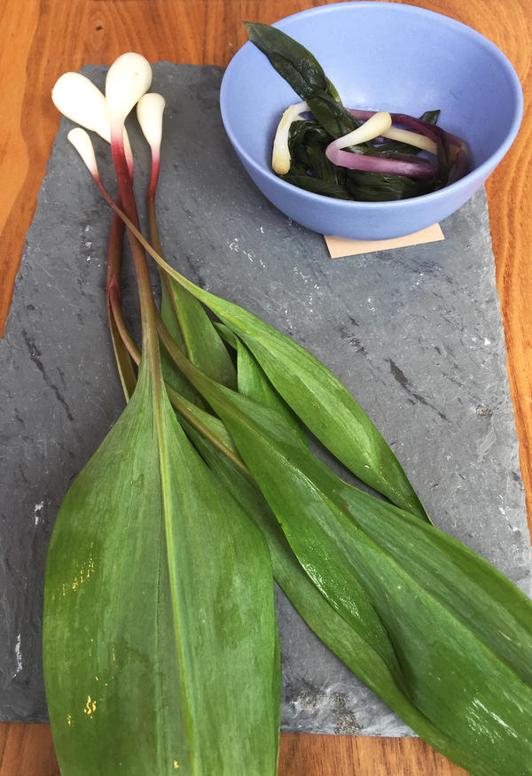 Chef Rob Weland fermented ramps to make a ramp kimchi, which was featured on his menu this spring at Garrison restaurant in Washington, D.C.