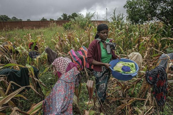A woman dries clothes in a failed maize field in the north of Malawi.