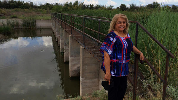 Lupe Dempsey, a retired federal agent, brings her Glock 9mm with her when she goes down to the Rio Grande. She believes the border is too wide open, evidenced by this unguarded metal walkway across the river in far West Texas.