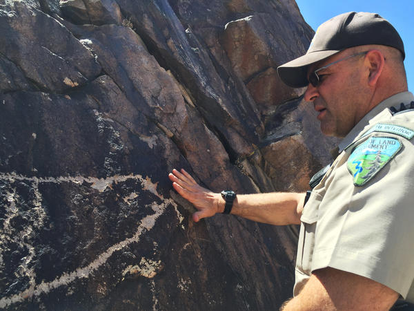 Nalen inspects a damaged petroglyph at a Native American cultural site near Pahrump, Nev.